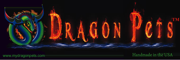 Dragon Pets (tm) logo